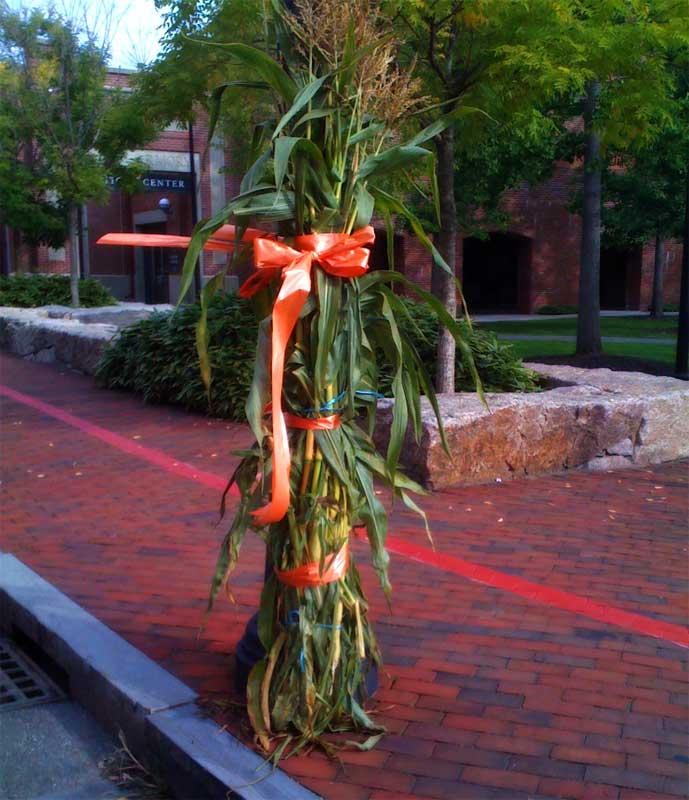 Corn Stalk Decoration Ideas: The Salem Insider » Batten Down The Hatches